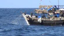 Chinese vessels fishing illegally in N.Korea waters: study