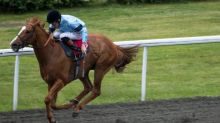 Exchequer v Exchequer: two horses with same name to race at Musselburgh