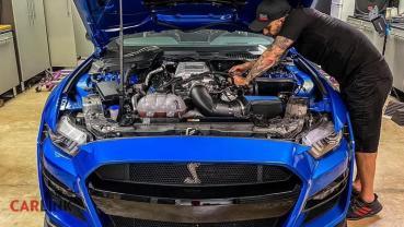 猛過Ferrari的美國「野馬王」!Ford Shelby GT500 2020「周邊改」力破1100hp