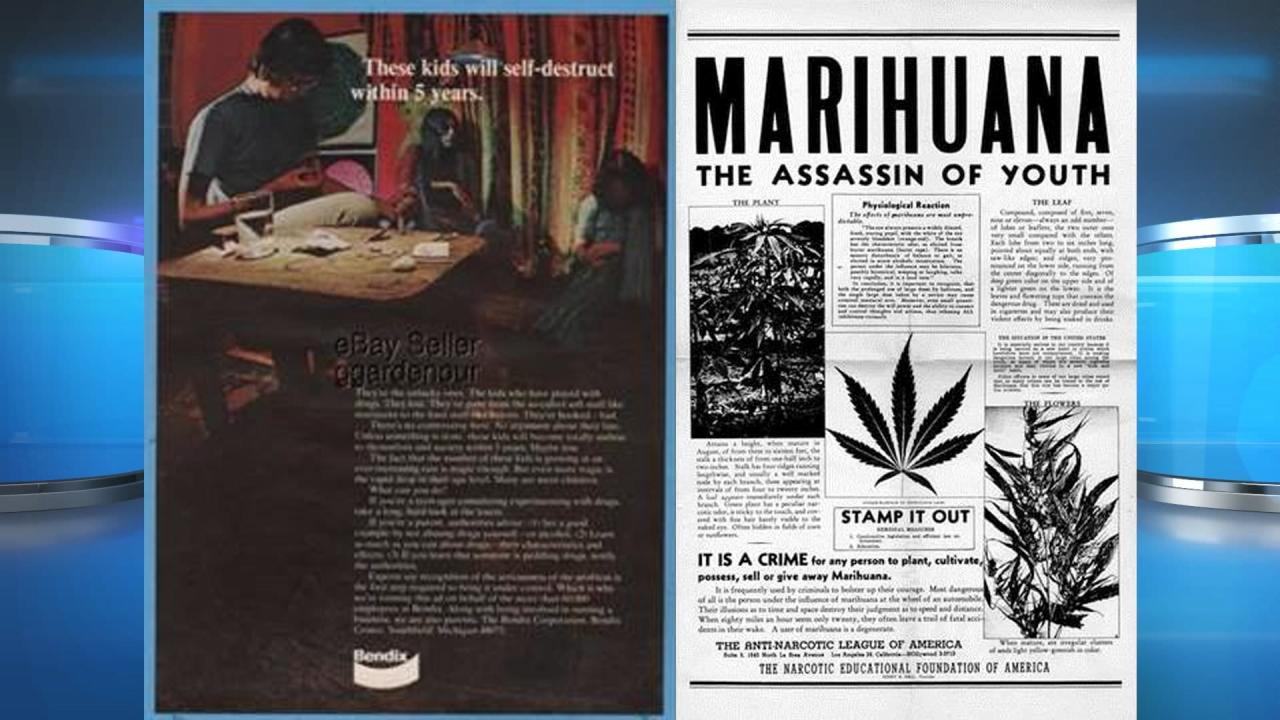 an examination of the two sides of marijuana the legal and illegal sides German law and the german legal system  three professional judges and two lay judges or five professional judges  including marijuana and hashish,.