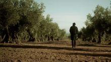 El falso documental sobre el aceite español que tiene a EEUU desconcertado