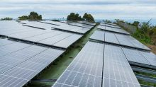 Dark Times For Solar Panel Makers As Falling Costs Hit Profits