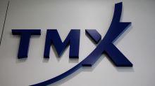 Canada's TMX Group interim chief John McKenzie CEO