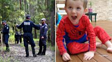 Boy's scream heard in bushland after William Tyrrell went missing