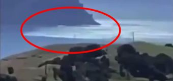 Scary scenes emerge after tsunami warning