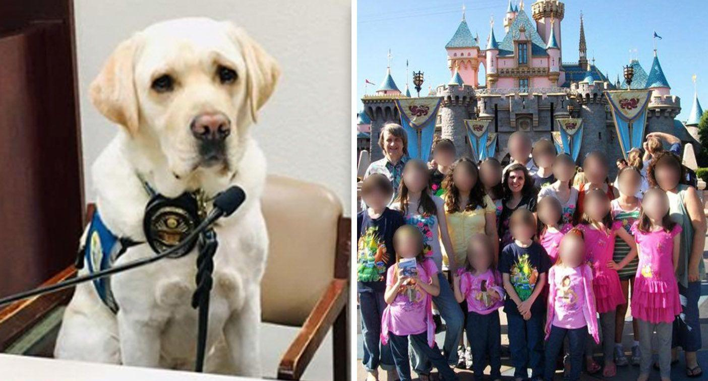 The police dog who comforted 'House of Horrors' children at parents' sentencing