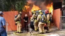 Hombre entra a casa en llamas para salvar a su perra