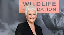 Dame Judi Dench reveals she has not read any Cats reviews