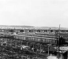 Survivors, dignitaries to mark Auschwitz liberation 75 years on