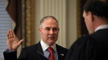 New U.S. environmental chief says agency can also be pro-jobs