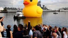Why is the world's largest rubber duck coming to Fort Worth?