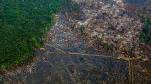Governo demite coordenadora do Inpe após alertas sobre desmatamento na Amazônia