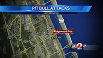 2 pit bulls get loose, attack 3 people in Holly Hill