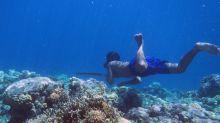 Los científicos han descubierto por qué los nómadas bajau pueden pasar tanto tiempo sin respirar bajo el agua