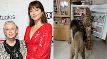 Dakota Johnson Says Her Legendary Grandma, Tippi Hedren, Has '13 or 14' Lions and Tigers