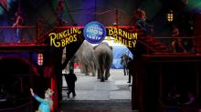 Ringling Bros.' Demise Offers Opportunities for Smaller Circuses