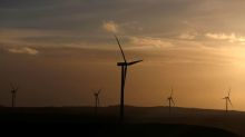 Winds of change: how Enel and Iberdrola powered up for the energy transition