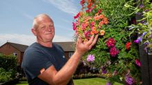 Amateur gardener fills more than 100 hanging baskets and pots in his small suburban garden