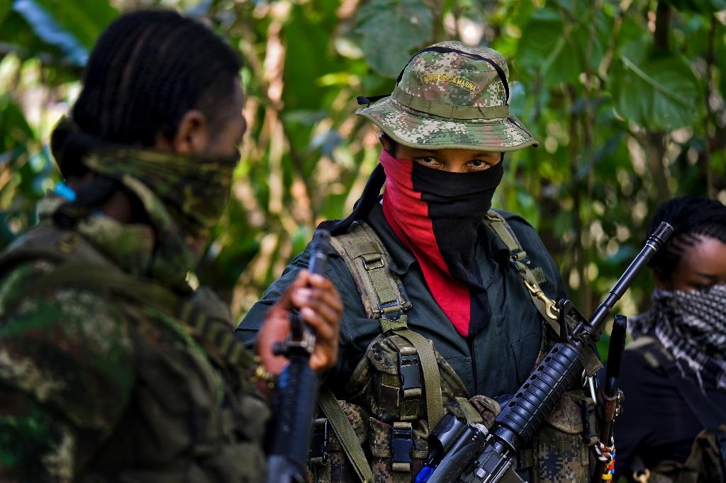 The FARC and ELN formed in 1964 to fight for land rights and protection of poor rural communities in Colombia (AFP Photo/LUIS ROBAYO)
