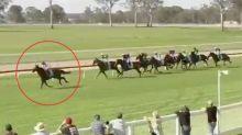 Jockey's brain fade seals embarrassing fate