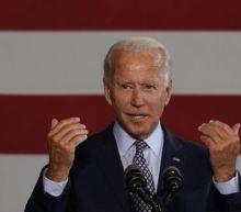 Democrat voters rally around Biden, according to new poll