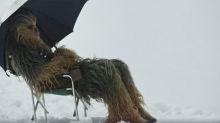 'Star Wars' shocker: Chewbacca's diva behavior revealed in behind-the-scenes video