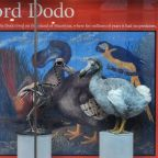 Who shot Lewis Carroll's dodo? Forensic scans reveal mystery death