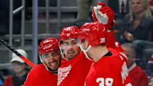 When might we see the Detroit Red Wings play again? Why that Jan. 1 start date is in doubt