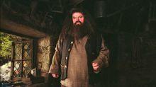 So sieht Harry Potters Hagrid im echten Leben aus