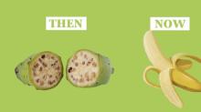 Video muestra cómo cambiaron las frutas y verduras en los últimos 7 mil años