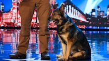 "'Britain's Got Talent' police dog magic act Dave and Finn branded a ""fix"""