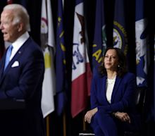 Kamala Harris' First Event With Biden Shows Just How Different Politics Is Without an Audience