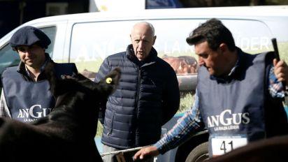 """Entre las vacas y la política. Lavagna apuesta a """"llegar a un ballottage"""""""