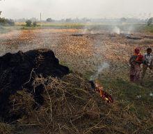 Delhi braces for pollution 'airpocalypse' as smog looms
