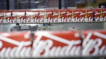 AB InBev Cut by Moody's Amid Struggles to Trim Massive Debt Pile