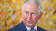 Prince Charles at 70: Why he's been 'banging the drum' to make a difference, but says he won't meddle as king