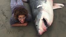 Scientist slammed for 'appalling' photo with great white shark