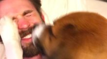 Chris Evans Shares a Precious Video of the Moment He Met His Rescue Dog Dodger