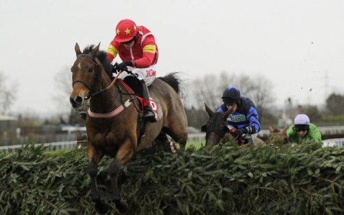 Highland Lodge could spring a surprise at Aintree