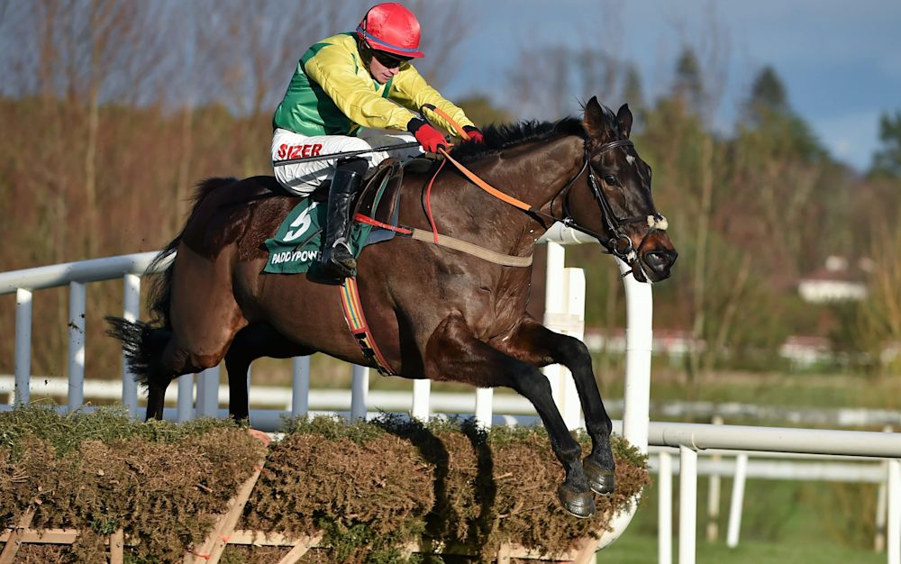 Sizing John in action atLeopardstown - This content is subject to copyright.