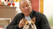 Beatrice, Beloved French Bulldog on 'Modern Family,' Dies After Series Finale Wrap