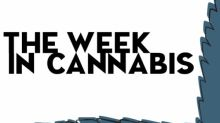 The Week In Cannabis: Stocks On The Rise, Earnings, Big Cannabis Sales, Moves In Argentina