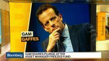GAM Shares Plunge After Asset Manager Freezes Fund