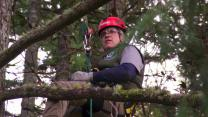 'Treetop Cat Rescue': Get to Know the Guys of Canopy Cat Rescue