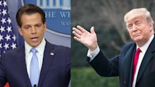 If the U.S. were a public company, Anthony Scaramucci believes Trump would be dismissed 'for the unsoundness of his personality'