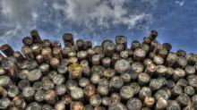 Will U.S. Duties Cripple Canadian Lumber Stocks?