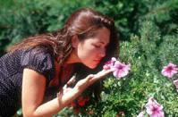 Rockefeller University scientists figure out how to see smells