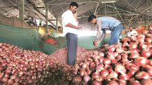 After record high of Rs 100 per kg, onion prices cool down across Maharashtra