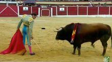 Enrique Ponce desconcierta hasta al toro con lo que hace en esta imagen: va por Ana Soria