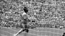 50 anos da melhor seleção em 90 anos de Copas